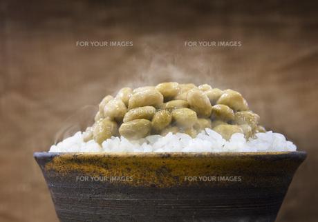 納豆ご飯の写真素材 [FYI00077927]