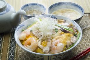 天津丼の写真素材 [FYI00078012]