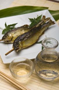 鮎の塩焼きと冷酒の写真素材 [FYI00078216]