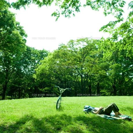 公園で昼寝する男性の素材 [FYI00078223]