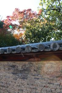奈良の風景の写真素材 [FYI00078258]