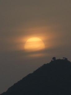 朝もやの日の出の写真素材 [FYI00079526]