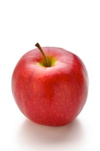りんごの写真素材 [FYI00079902]
