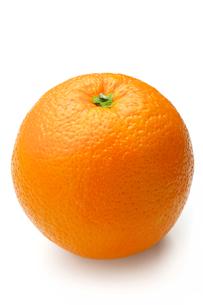 オレンジの写真素材 [FYI00079936]