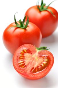 トマトの写真素材 [FYI00079951]