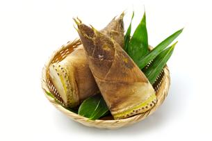 竹の子の写真素材 [FYI00080004]