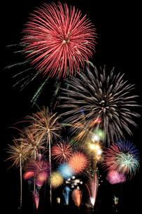 長良川の花火の写真素材 [FYI00080058]