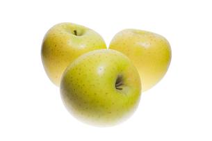黄リンゴアンダーライトの写真素材 [FYI00080145]