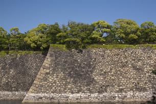 大阪城西外濠の石垣と新緑の写真素材 [FYI00080258]