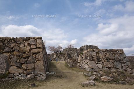 竹田城跡の春の写真素材 [FYI00080296]