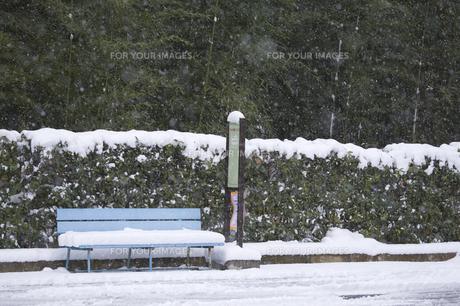 雪降るバス停の写真素材 [FYI00080355]