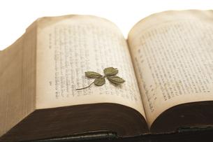 古書と四つ葉の押し花の写真素材 [FYI00080358]