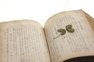 古書と四つ葉の押し花の写真素材 [FYI00080367]