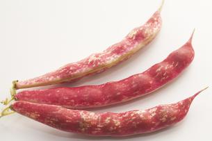 赤まだらインゲン豆の写真素材 [FYI00080384]