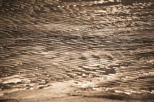 干潟の波紋模様の写真素材 [FYI00080418]