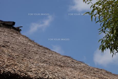 かやぶき屋根のスロープの写真素材 [FYI00080543]