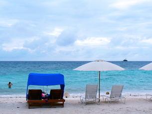 パラオのビーチの写真素材 [FYI00081730]