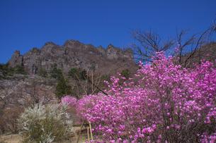 春の妙義山の写真素材 [FYI00081929]
