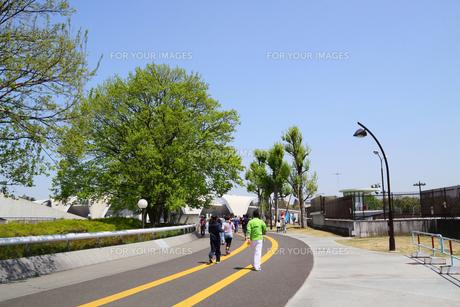 駒沢公園と人々の写真素材 [FYI00081972]