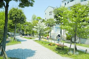 家並みと新緑の写真素材 [FYI00082025]