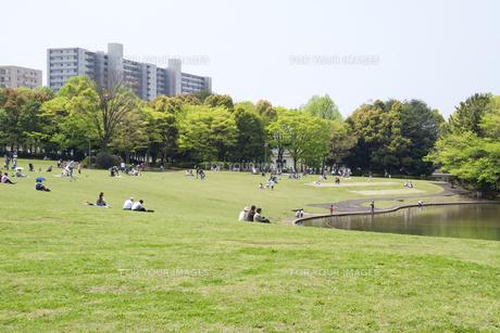 公園とマンションの写真素材 [FYI00082026]