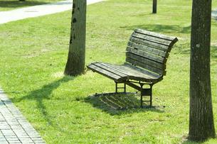 ベンチと芝生の写真素材 [FYI00082032]