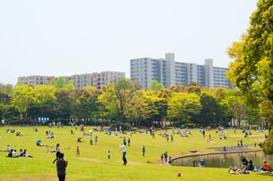 高層マンションと公園の写真素材 [FYI00082323]