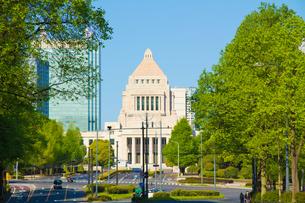 新緑の国会議事堂の写真素材 [FYI00082385]