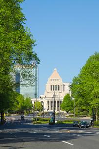 国会議事堂と新緑の写真素材 [FYI00082386]