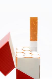 タバコの素材 [FYI00082490]
