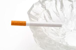 たばこの写真素材 [FYI00082508]