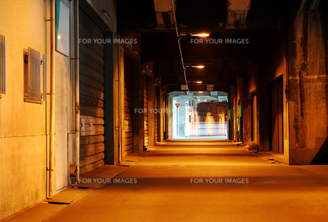高架下通路の写真素材 [FYI00082515]