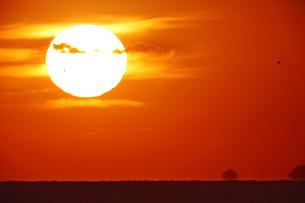夕日の素材 [FYI00084515]