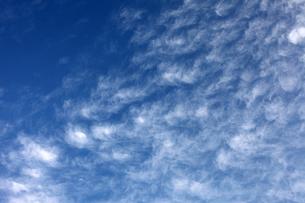 うろこ雲の写真素材 [FYI00084593]