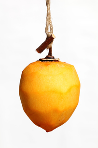 干し柿の写真素材 [FYI00084609]
