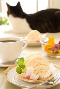 洋菓子と猫の写真素材 [FYI00084920]