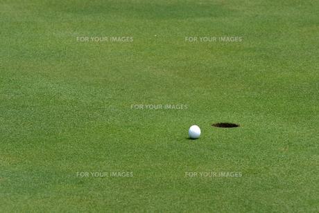 ゴルフボールの写真素材 [FYI00084962]