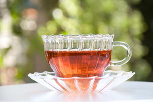 紅茶の写真素材 [FYI00085092]