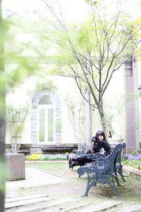 ベンチに座っている女の子と犬の素材 [FYI00085118]