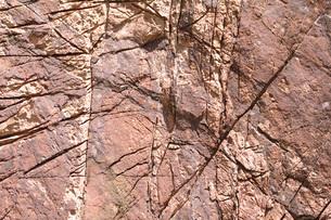 岩肌の写真素材 [FYI00085496]