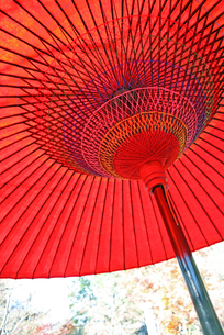 赤い和傘の写真素材 [FYI00086034]