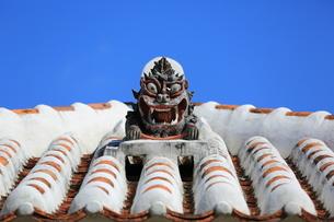 竹富島のシーサーの写真素材 [FYI00086069]