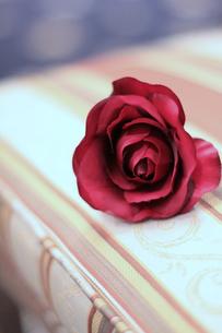 赤いバラのコサージュの写真素材 [FYI00086170]