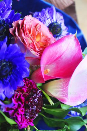 花束の写真素材 [FYI00086406]