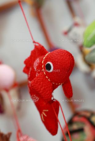 つるし雛 鯉の写真素材 [FYI00086427]