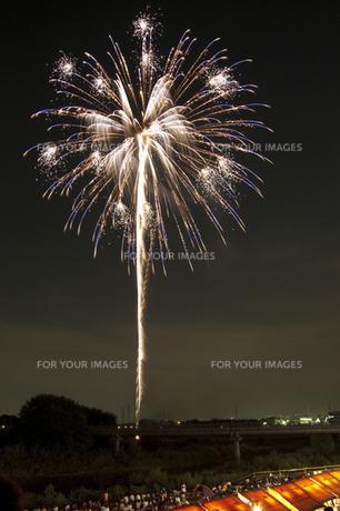 花火と屋台 3の写真素材 [FYI00086505]