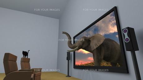 3Dテレビの素材 [FYI00086718]