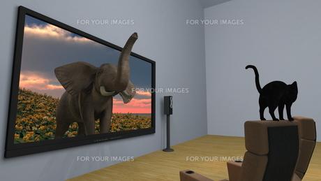 3Dテレビの素材 [FYI00086735]