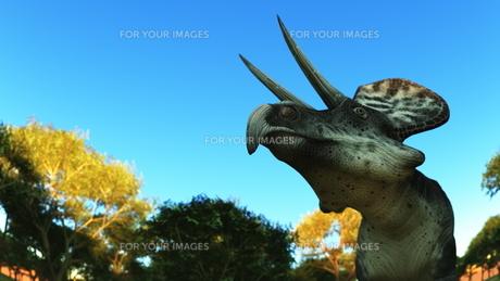 恐竜の写真素材 [FYI00086895]