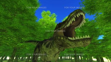 恐竜の写真素材 [FYI00086897]